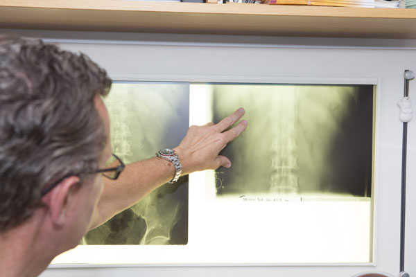 Ultraschall Urologen Borken